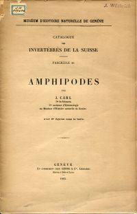 Amphipodes.