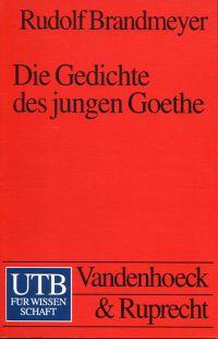Die Gedichte des jungen Goethe. Eine gattungsgeschichtliche Einführung.